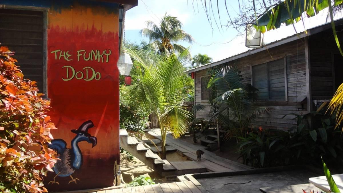 Funky Dodo